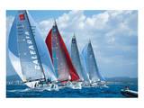 Sail Regatta Print