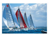 Sail Regatta Poster