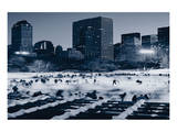 Central Park Wollman Rink Print