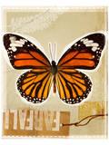 Monarch Butterfly Study Prints