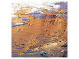 Desert Mirage Prints