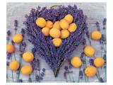 Lavender and Abricot Kunstdrucke