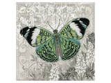 Green Butterfly Print by Alan Hopfensperger