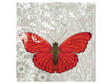 Red Butterfly Prints by Alan Hopfensperger