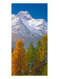 Denali Mount Mckinley Alaska Posters