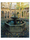 Citadel Fountain Prints