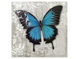 Blue Butterfly II Posters by Alan Hopfensperger