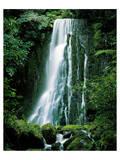 Matai Falls New Zealand Posters