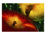 Apple Fresh Print by Connie Publicover