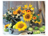Sunflower Arrangement I Art