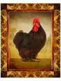 Black Hen Prints