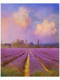 Lavender I Kunstdruck von Chris Vest