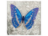 Blue Butterfly I Print by Alan Hopfensperger