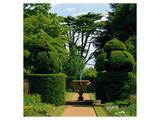 Somptuous Garden IX Prints