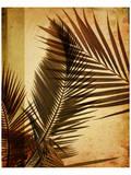 Warm Palms II Print