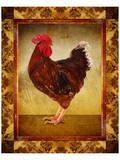 Brown Hen Posters