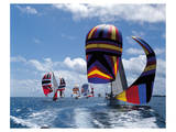 Colorful Sails Prints