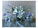 Pretty Magnolias Affiche