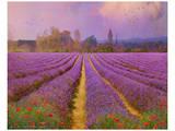 Lavender III Poster von Chris Vest
