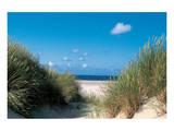 Beach Path Through The Dunes Prints
