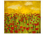 Sunny Poppy Field I Poster by Anne Hempel