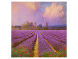 Lavender II Posters by Chris Vest