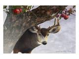 Apple Deer Poster by Chris Vest