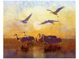 Sunrise Cranes Kunstdruck von Chris Vest