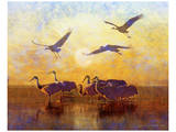 Sunrise Cranes Posters by Chris Vest