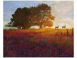 Trees, Poppies and Deer III Prints by Chris Vest
