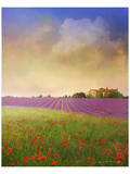 Lavender IV Poster by Chris Vest