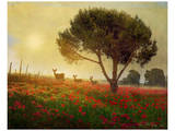 Trees, Poppies and Deer I Poster by Chris Vest