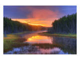 Wetland at Sunrise Posters by Mike Grandmaison