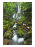 Dickson Falls I Posters by Mike Grandmaison
