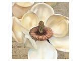 Magnolia Masterpiece I Print by Louise Montillio