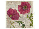 Poppy Pages Square I Posters by Louise Montillio