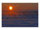 Gaspe Sunset Posters by Mike Grandmaison
