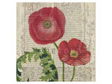Poppy Pages Square II Prints by Louise Montillio