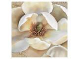Magnolia Masterpiece II Print by Louise Montillio