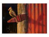 Roter Kardinal Poster von Chris Vest