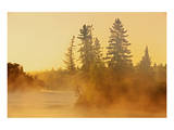 Fog on Bird River Prints by Mike Grandmaison