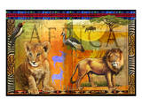 African Lion Posters by Chris Vest