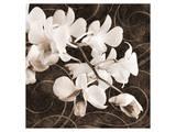 Sepia Orchid II Print by Christine Zalewski