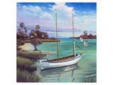 Schooner Bay Posters by Rick Novak
