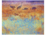Cranes in Soft Mist Posters by Chris Vest