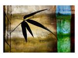 Bamboo Shade II Poster by Christine Zalewski