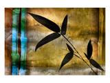 Bamboo Shade I Print by Christine Zalewski