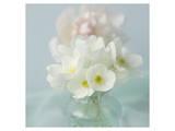 Little Bouquet of Anemones Kunstdruck von Judy Stalus