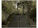 Conservatory Stairs Prints by Richard James