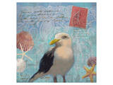 Gull Beach I Posters by Rick Novak